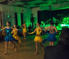 Ples ZŠ Frýdecká, Havířov 3/2015